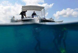Rich Coast Diving's Tahonga
