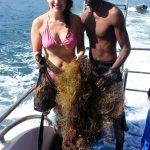 Dive Against Debris Dive