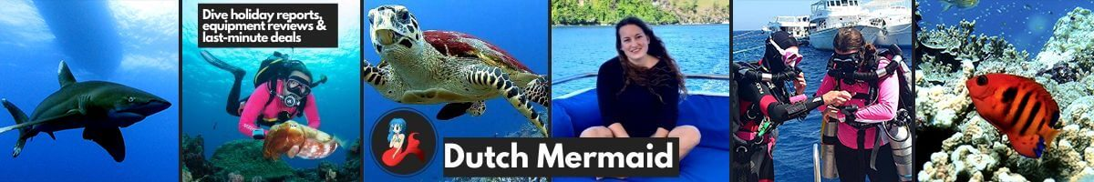 Dutch Mermaid