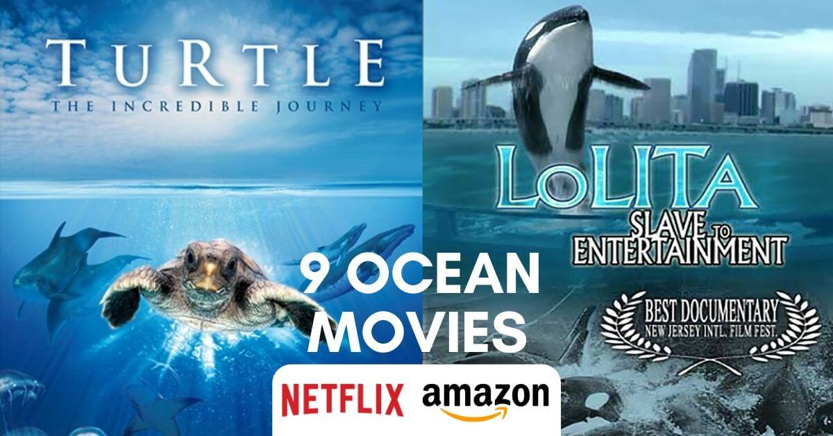 9 Movies about the ocean