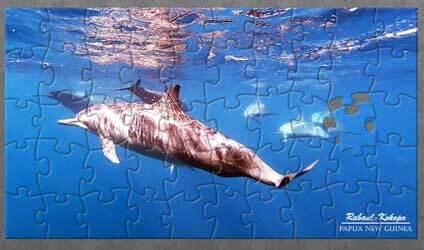 Rabaul-Kokopo Puzzle