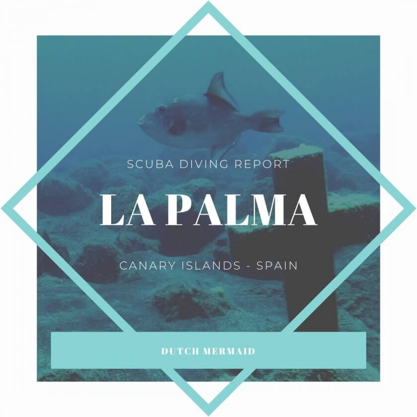 Scuba Diving on La Palma – Canary Islands – Spain