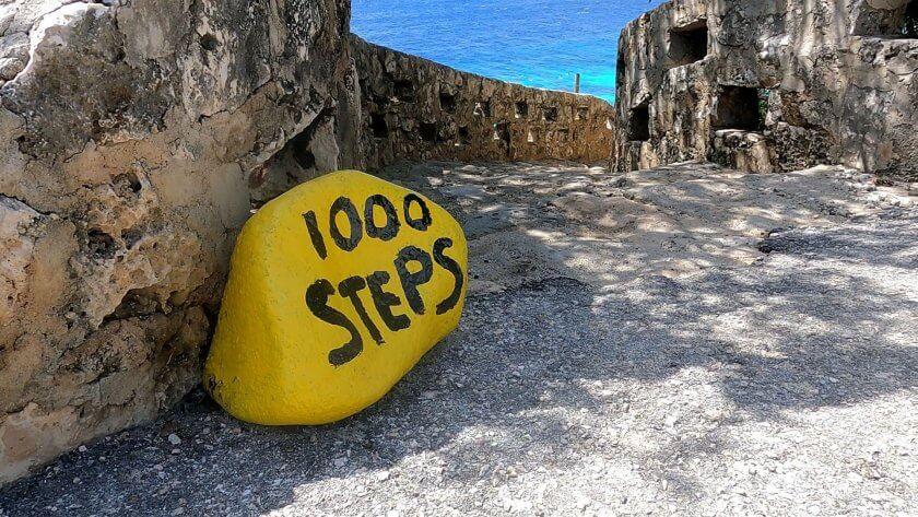 Dive Site a 1000 Steps in Bonaire – Scuba Diving
