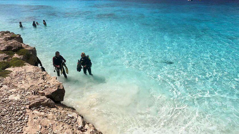 Macro Paradise Bachelor's Beach – Scuba Diving in Bonaire
